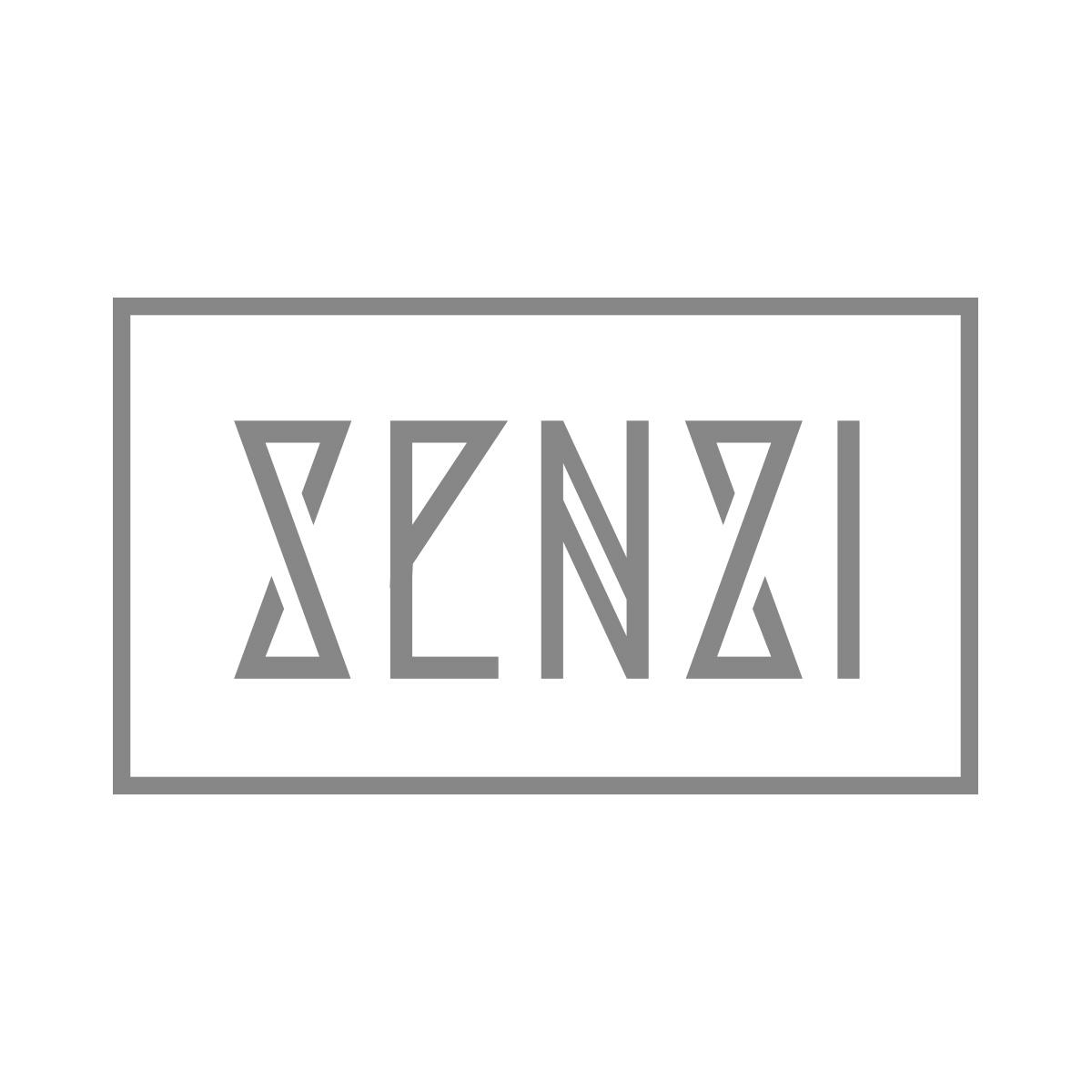 Senzi Logo