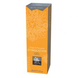 Stimulation Gel - Ginger & Kaneel - Shiatsu | PleasureToys.nl